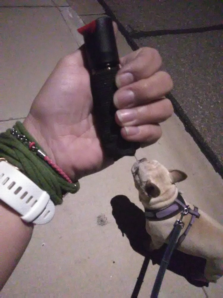 Walking your dog while carrying the Sabre Runner Pepper Gel is easy.